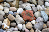 Pebbles — Stockfoto