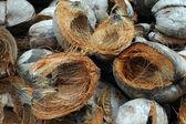 Coconut shells — Stock Photo