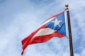Flag of Puerto Rico — Stock Photo
