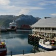 Honningsvag harbor, Nordkapp municipality, Norway — 图库照片