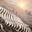 Stock Photo: Terraces in sunrise