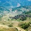 Stock Photo: Village and terraced fields