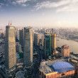 Modern metropolis of shanghai at dusk — Stock Photo #13135788