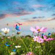 Butterflies flying in the flowers — Stock Photo