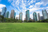 Shanghai greenbelt park — Stock Photo