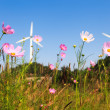 Stock Photo: Flower with wind power