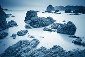 Roccia corallina con lunga esposizione — Foto Stock