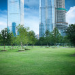 City park greenbelt in shanghai — Stock Photo
