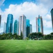 Beautiful city greenbelt with modern buildings — Stock Photo