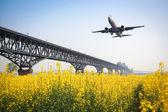 Aeronaves de primavera — Foto Stock