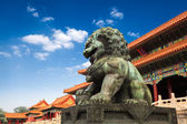 Bronze lion in beijing forbidden city — Stock Photo