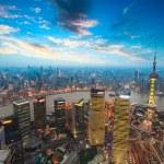 Shanghai in sunset — Stock Photo #24236283