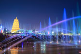 Big wild goose pagoda with fountains at night — Stock Photo