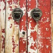 The mottled old door closeup — Stock Photo