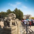 Stone lion closeup in beijing — Photo