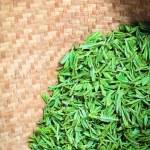 Fresh green tea closeup — Stock Photo #30597095