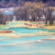 Blue travertine ponds in huanglong — Stock Photo #34678479