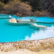 Blue travertine ponds in huanglong — Stock Photo #34678855