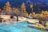 Travertine ponds in autumn forest — Stock Photo