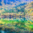 colorful lakes in jiuzhaigou valley — Stock Photo