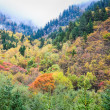Autumn in the valley — Stock Photo