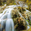 Stock Photo: Waterfall and stream in the forest