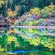 Autumn color reflection in the blue lake — Stock Photo