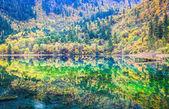 Colorful lakes in jiuzhaigou valley — Stock fotografie