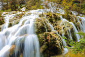 Waterfall and stream in the forest — Stock Photo