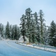 Mountain road with snow — Stock Photo