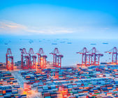 Shanghai container terminal at dusk — Stock Photo