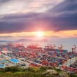Busiest container terminal at dusk — Stock Photo