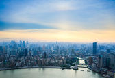 Aerial view of shanghai in sunset — Foto de Stock