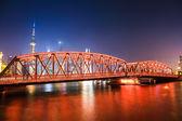 Shanghai tuin brug bij nacht — Stockfoto
