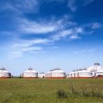 Prairie gers — Stock Photo #41903697