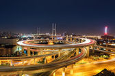 Shanghai nanpu bridge at night — Foto Stock