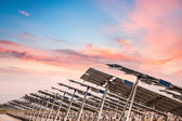 Solar power farm in sunset — Stock Photo