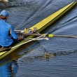 Rowing — Stock Photo #26534869