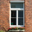Brick wall with windows — Stock Photo #20799493