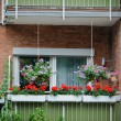 Balcony with flowers - 图库照片