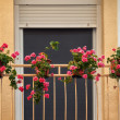 Balcony with flowers — Stock Photo #28205885