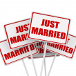 Foto de Stock  : Just married