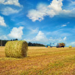 Haystack — Stock Photo #30451353