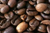 Dark whole coffee beans background — Stock Photo