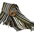 Scarf — Stock Photo #21094115