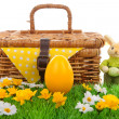 Stock Photo: Easter egg and basket