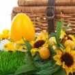 Easter egg and basket — Stock Photo