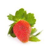 Big fresh strawberry — Stock Photo