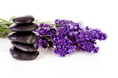 Stacked black pebbles stones and lavender flowers — Stock Photo