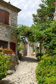 Street view in Balazuc, France — Stock Photo